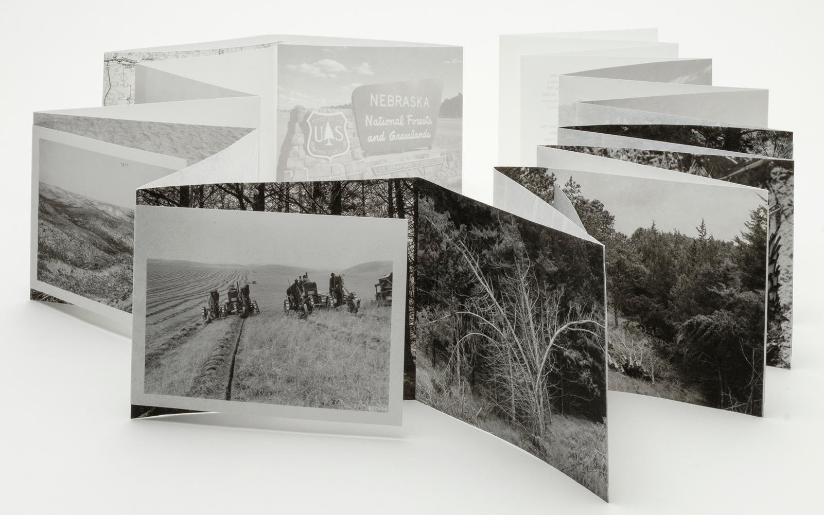 Pocket Field Guide to a Hybrid Landscape by Dana Fritz