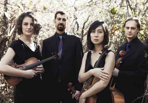Chiara String Quartet, Photograph by Lisa-Marie Mazzucco
