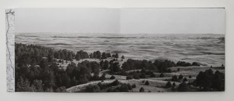 """Dana Fritz, """"Fire Tower View,"""" from """"Field Guide to a Hybrid Landscape."""""""