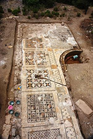 Photo of the full mosaic uncovered thus far