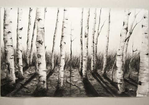 "Chase McClaren, ""Mourning Aspens,"" November 2013,  Graphite on Yupo,  4.5' x 7.5'."