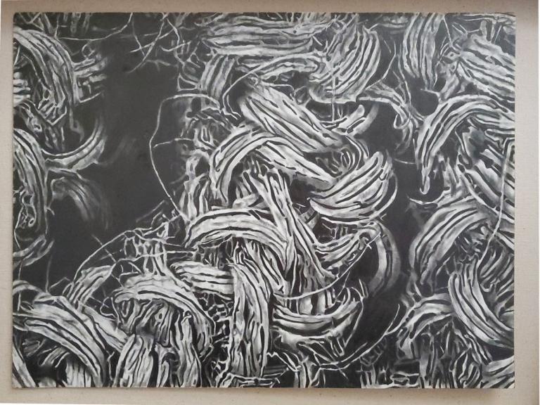 "Sofia Fernandez, ""Black Fique,"" graphite on paper, 12"" x 16""."