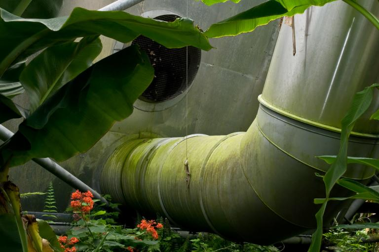 "Dana Fritz, ""Green Ductwork, Eden Project,"" from Terraria Gigantica: The World Under Glass."