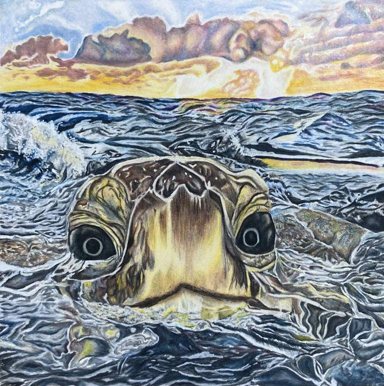 "Maddie McGowen, ""The Sea Turtle,"" colored pencil, 12"" x 12"", 2020."