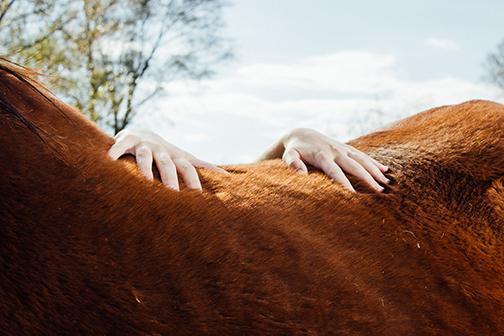 "Megan Rook, Support, photograph, 14.5"" x 22"", 2015."